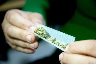 marijuana-1_custom-105156d928033e5ad7fa27cb6be0e488126a80c0-s900-c85.jpg